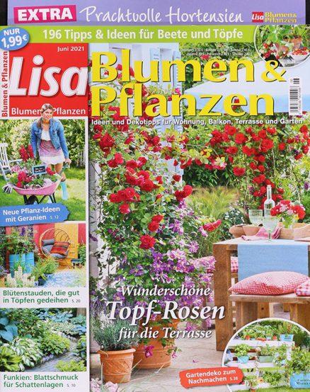 Lisa Blumen & Pflanzen 1226 0621 FMT